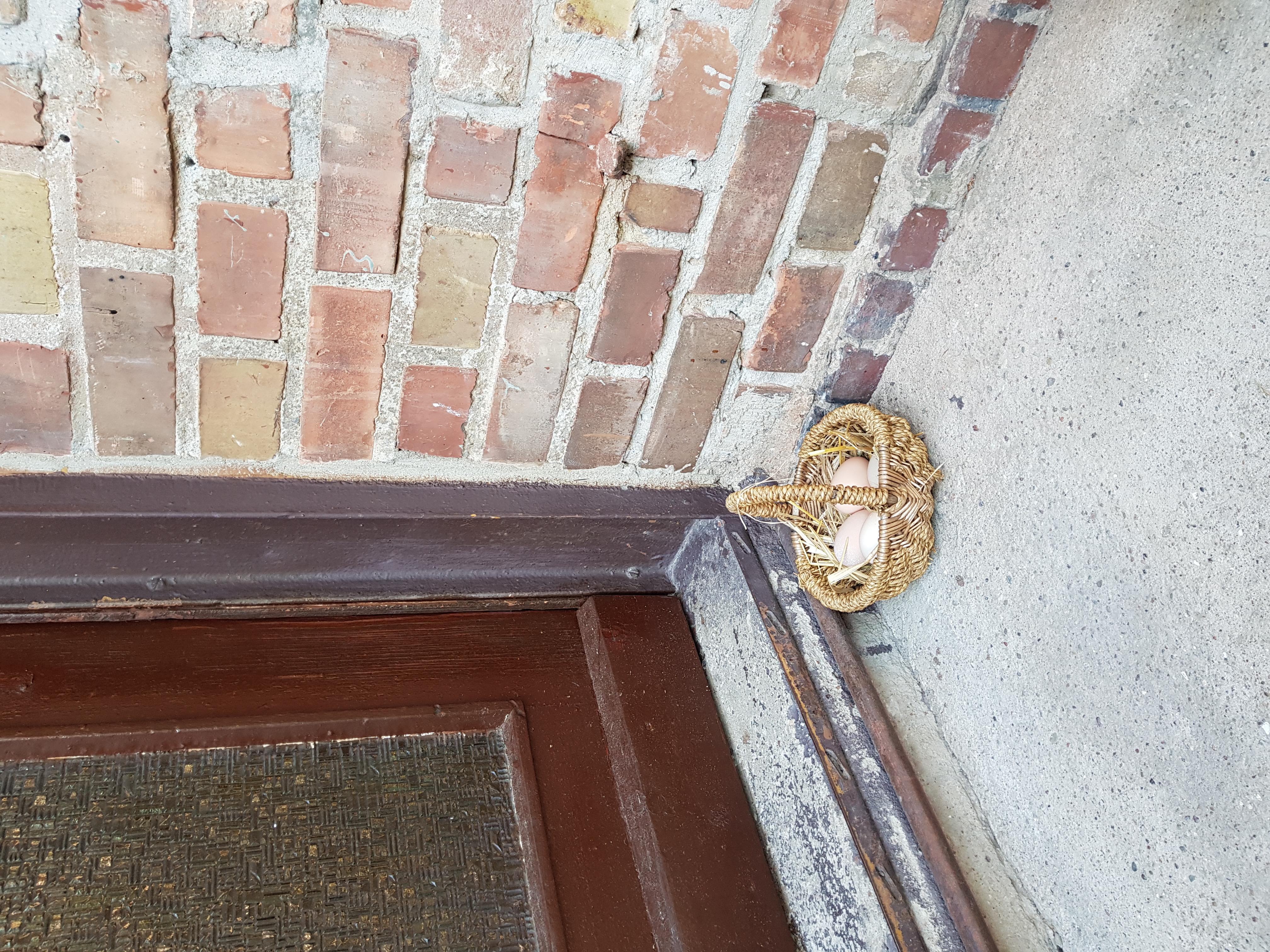 Frische Eier von unseren Hühnern vor die Tür…..